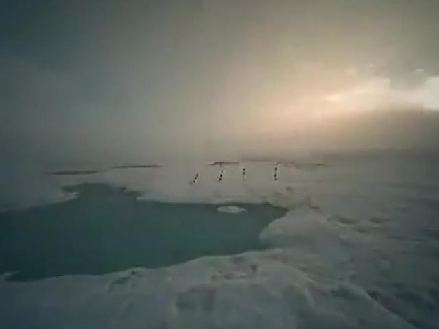 На Северном полюсе образовалось озеро