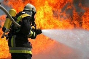В Донецкой области пожар уничтожил десять дачных домов