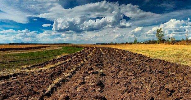 ЕСПЧ обязал Украину отменить мораторий на продажу земли