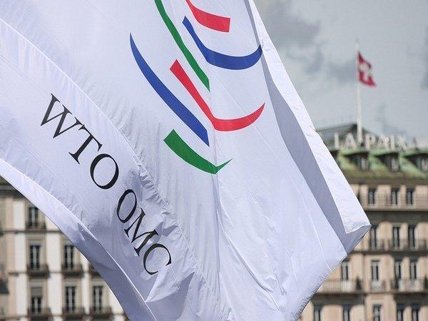 Россия в первый раз выиграла спор у Украины в ВТО