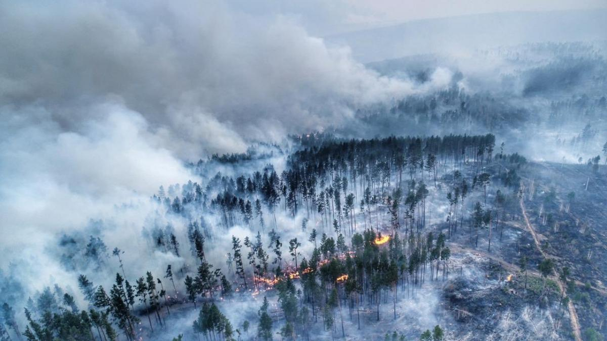 В трех сибирских регионах объявлен режим ЧС из-за пожаров