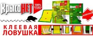 Крысиный яд: дай настоящий бой грызунам