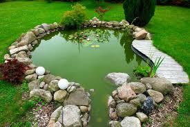 Ошибки при создании водоема в саду